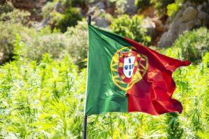 legalização cannabis portugal